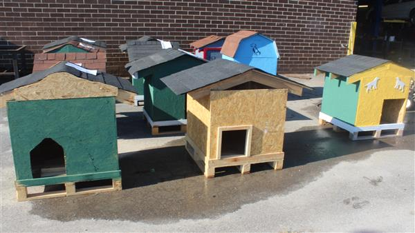 Carpentry Students Build Animal Shelters for Charity